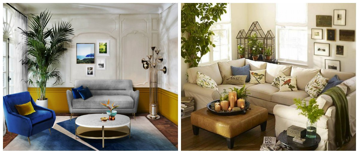 home decor 2019, home design 2019 with fashionable plants