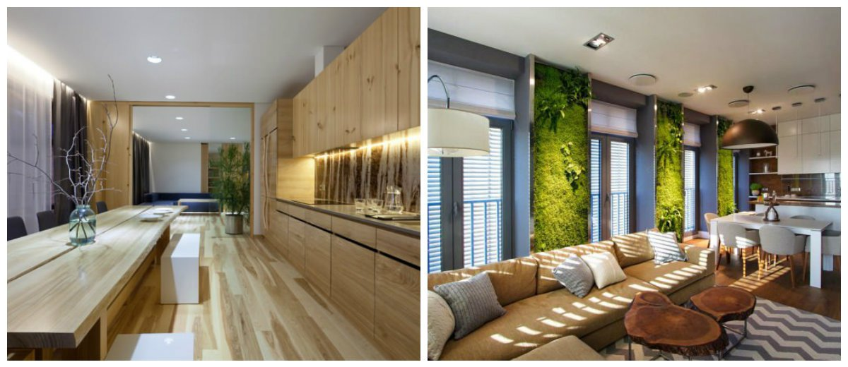 eco interior design, fashionable colors in eco style interior design