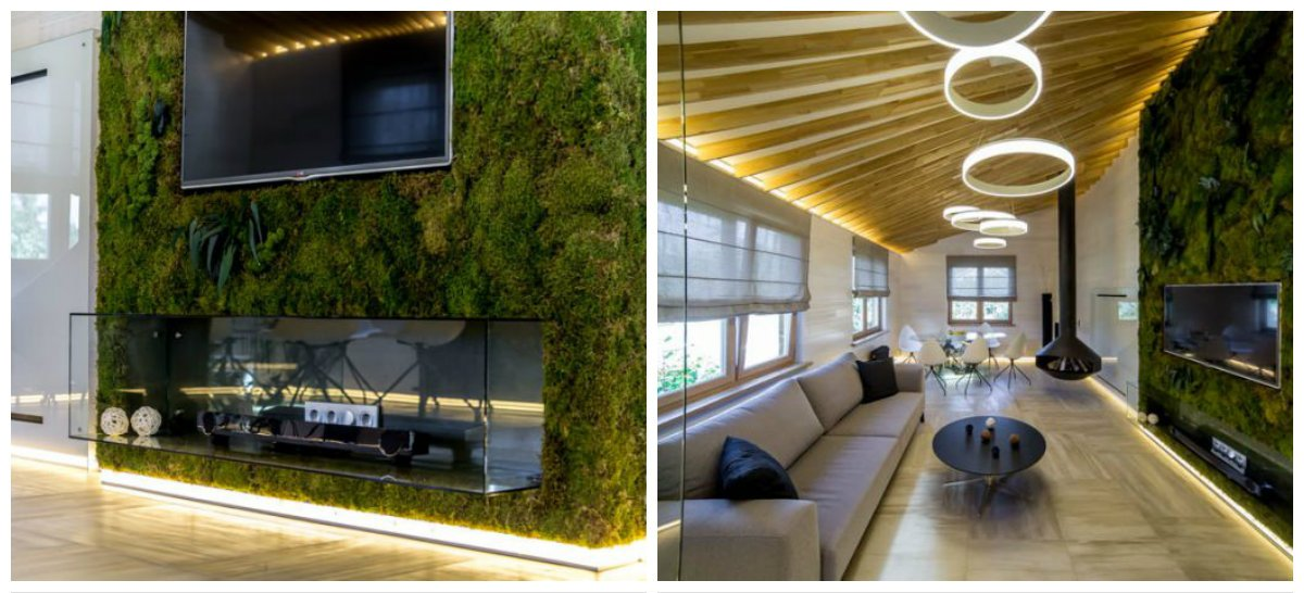 eco interior design, stylish trends in eco interior design