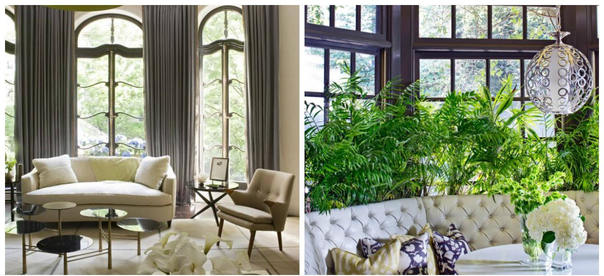interior color schemes, olive and charcoal with celadon combination